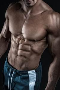 Image Homme Musclé : le torse de repr sentation mod le de forme physique sportive forte d 39 homme muscles photo stock ~ Medecine-chirurgie-esthetiques.com Avis de Voitures