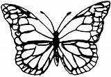 Butterfly Template Outline Monarch Templates Shrink Plastic Printable Drawing Shrinky Clipart Patterns Stencil Dink Lots Sizes Silhouette Crafts Paper Dinks sketch template
