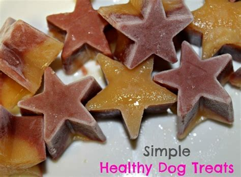 Buddy biscuit, the treat that all dogs crave. Simple Healthy Dog Treats Using Buddy Fruits - Two Little Cavaliers
