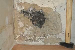 Probleme D Humidite Mur Interieur : mur enterr humidit ~ Melissatoandfro.com Idées de Décoration