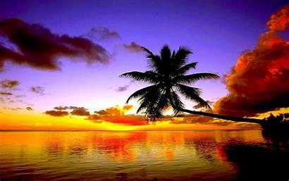 Sunset Screensavers Beach Tropical Desktop Wallpapers