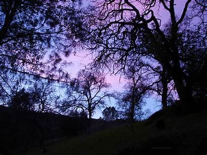 Pastel Sunset Colorful Purple 1080p Goth Tablet