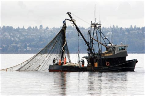 Commercial Fishing Boats Near Me by Jumble Spoiler 11 10 16 Unclerave S Wordy Weblog