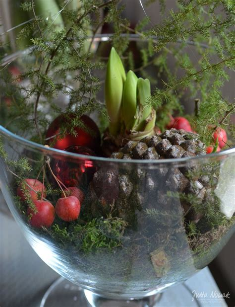 Amaryllis Im Glas Dekorieren by Jutta Nowak Adventsausstellung 2015 Rote Amaryllis In