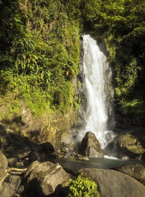 waterfalls rivers  rain forest  dominica