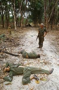 Vietnam War Killed in Action