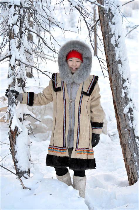 wolves preying  reindeer herds threaten seasonal joy