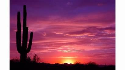 Sunset Desert Clipart 4k Wallpapers Backgrounds Wallpaperaccess