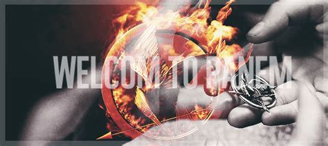 Hunger Bedroom Wallpaper by Welcome To Panem The Hunger Photo 33176307 Fanpop