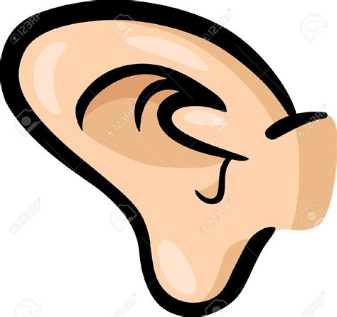 Ear Clip Best Ear Clipart 710 Clipartion