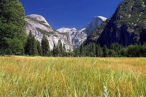 Free Photo Yosemite National Park, Landscape  Free Image