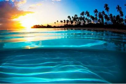 Sunset Tropical Palm Beach Landscape Turquoise Yellow