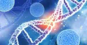 Hereditary, Cancer, Risks