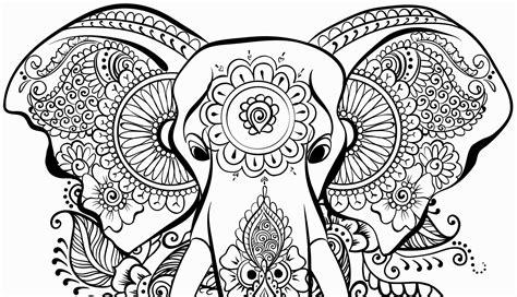 disegni da colorare e stare animali disegni da colorare e stare animali mandala da