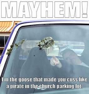 ♥Mayhem from ... Mayhem Allstate Quotes