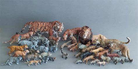 Felidae Family Project (ffp