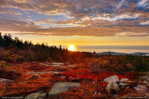 autumn sunrise  cadillac mountain  acadia