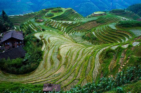 Longsheng Rice Terrace Wikipedia