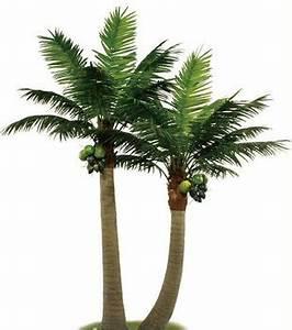 Mini Coconut Tree - Buy Mini Coconut Tree,Artificial