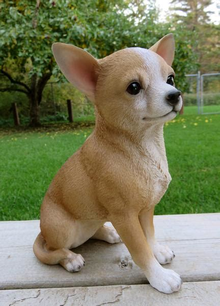chihuahua puppy statue brown color