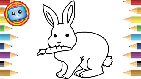 draw  rabbit colouring book simple drawing