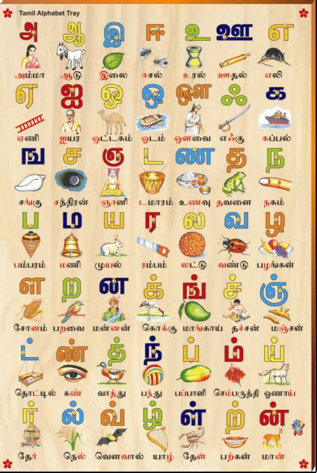 tamil alphabet picture tray rs  ed reading writing
