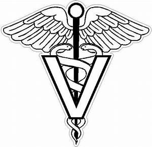 "Items similar to 6"" veterinary vet Caduceus Snake medical ..."