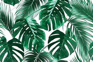 Tropical leaves vector pattern ~ Patterns ~ Creative Market