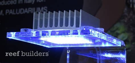 top 5 led lights for nano reef aquariums in 2012 marquee