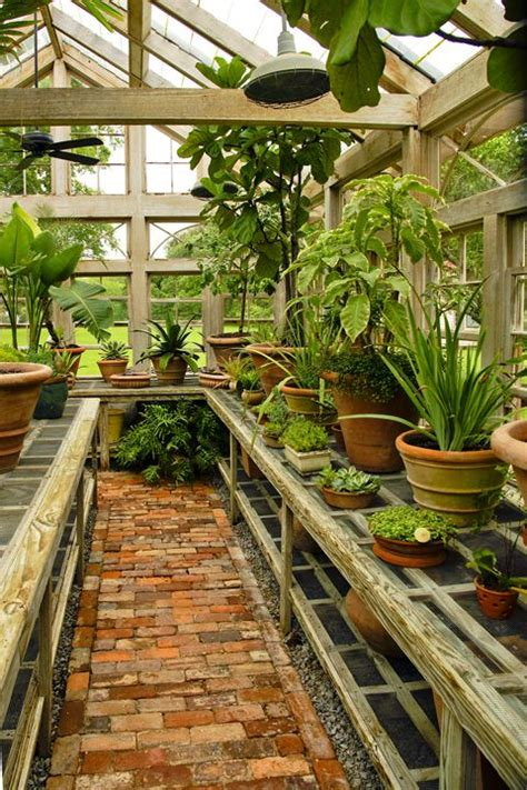 Best Greenhouses by Best 25 Greenhouses Ideas On Greenhouse Ideas
