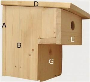 Nistkasten Für Blaumeisen : der vogelwart informiert ber den nistkastenbau ~ Orissabook.com Haus und Dekorationen