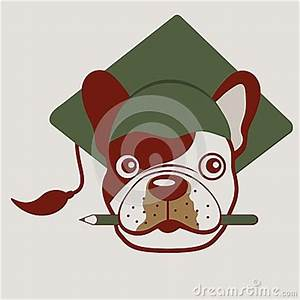 French Bulldog Face Stock Vector - Image: 48251776