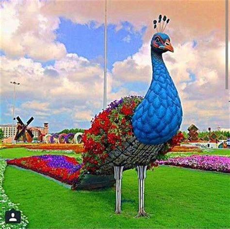Garden Decoration Dubai by Dubai Miracle Garden Dubai Attractions