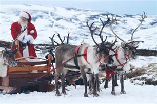 top 12 things to do this winter in the cairngorms visitcairngorms blog