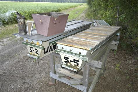 Top Bar Excluder - opening hives 200 top bar hives the low cost