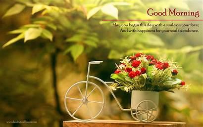 Morning Wallpapers Flower Flowers Goodmorning Desktop Floral