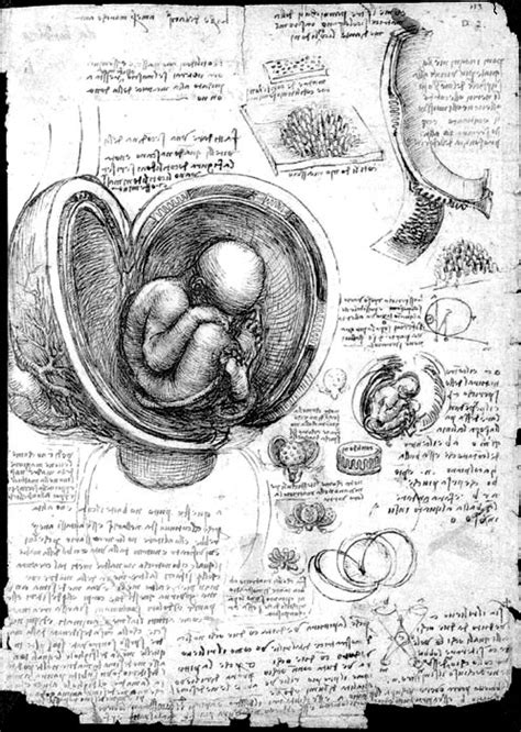 Imagery From the History of Medicine