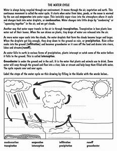 The Best Free Worksheet Drawing Images  Download From 1482