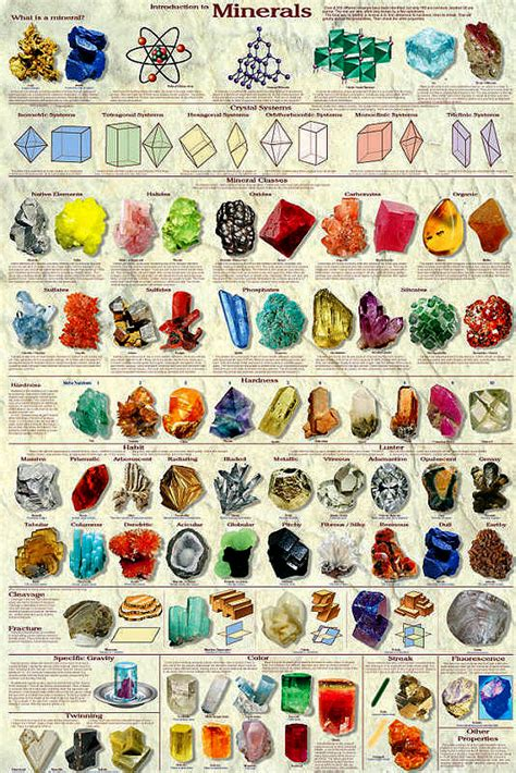Introduction To Minerals Poster By Feenixx Publishing