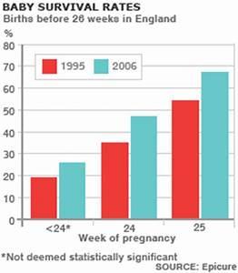 Bbc News Health Abortion The Medical Evidence
