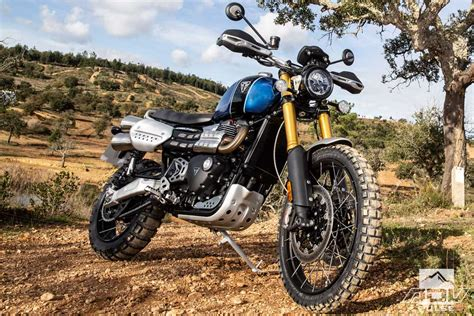 Triumph Scrambler 1200 Picture by Triumph Scrambler 1200 Capable Adv Bike In Scrambler