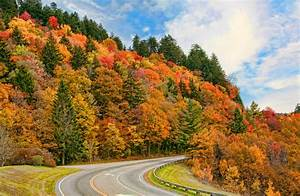Great Smoky Mountains National Park, USA – Extreme Outdoor
