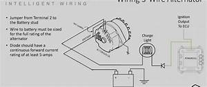 Unique Wiring Diagram 12v Alternator  Diagrams
