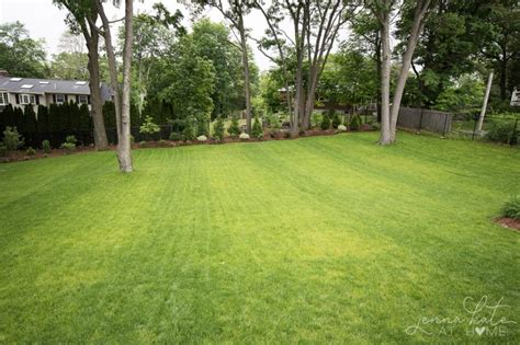Large Backyard Landscaping - our yard this large backyard landscaping inspiration