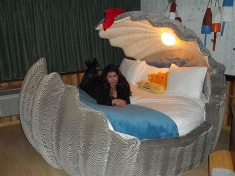 Clamshell Bed by Adventure Suites Picture Of Adventure Suites
