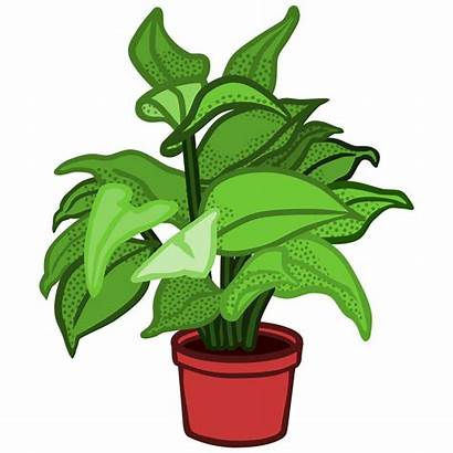 Plant Clip Clipart Plants Potted Pot Flower