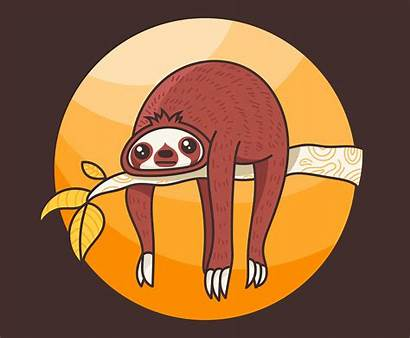 Sloth Illustration Vector Sleeping Clipart Dishes Vecteezy