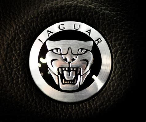 Jaguar Logo Photograph By Ronda Broatch