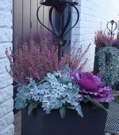 Planter Des Choux Fleurs : fleurs d 39 automne 6 propositions exquises pour votre d co mes choochous pinterest ~ Melissatoandfro.com Idées de Décoration
