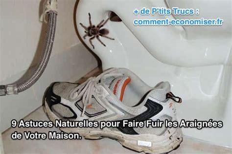 faire fuir les mouches 41 best images about astuces mouches fourmis on